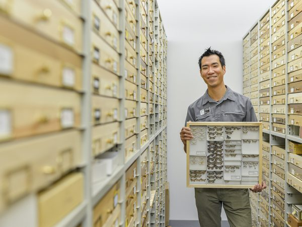 Akito holds a box of moth specimens
