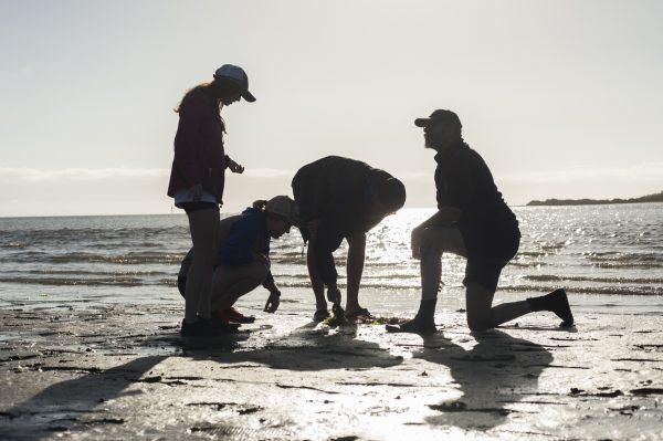 four people on sandbar backlit by early sun
