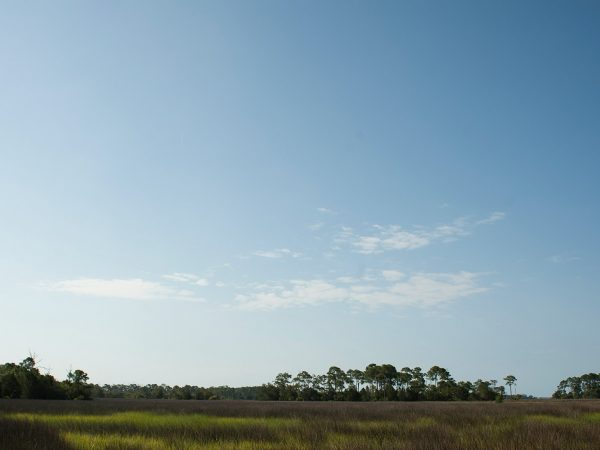 Cedar Key wetlands view with sky