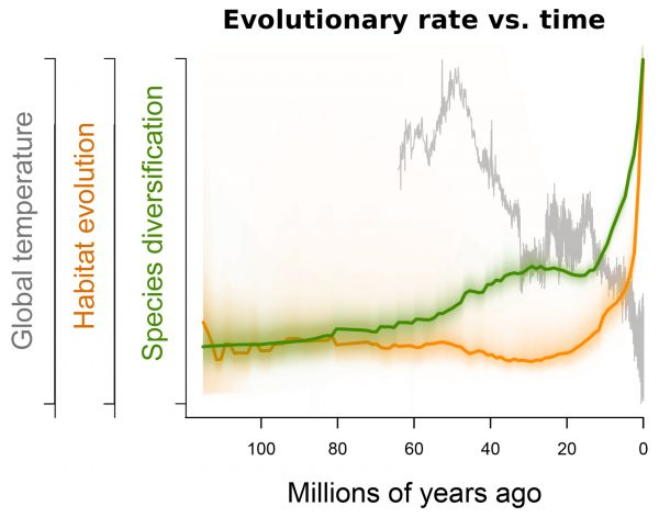 graph with three lines, green and orange rising over time, gray plummeting