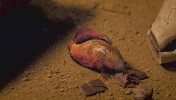 blob-like creature eating chocolate