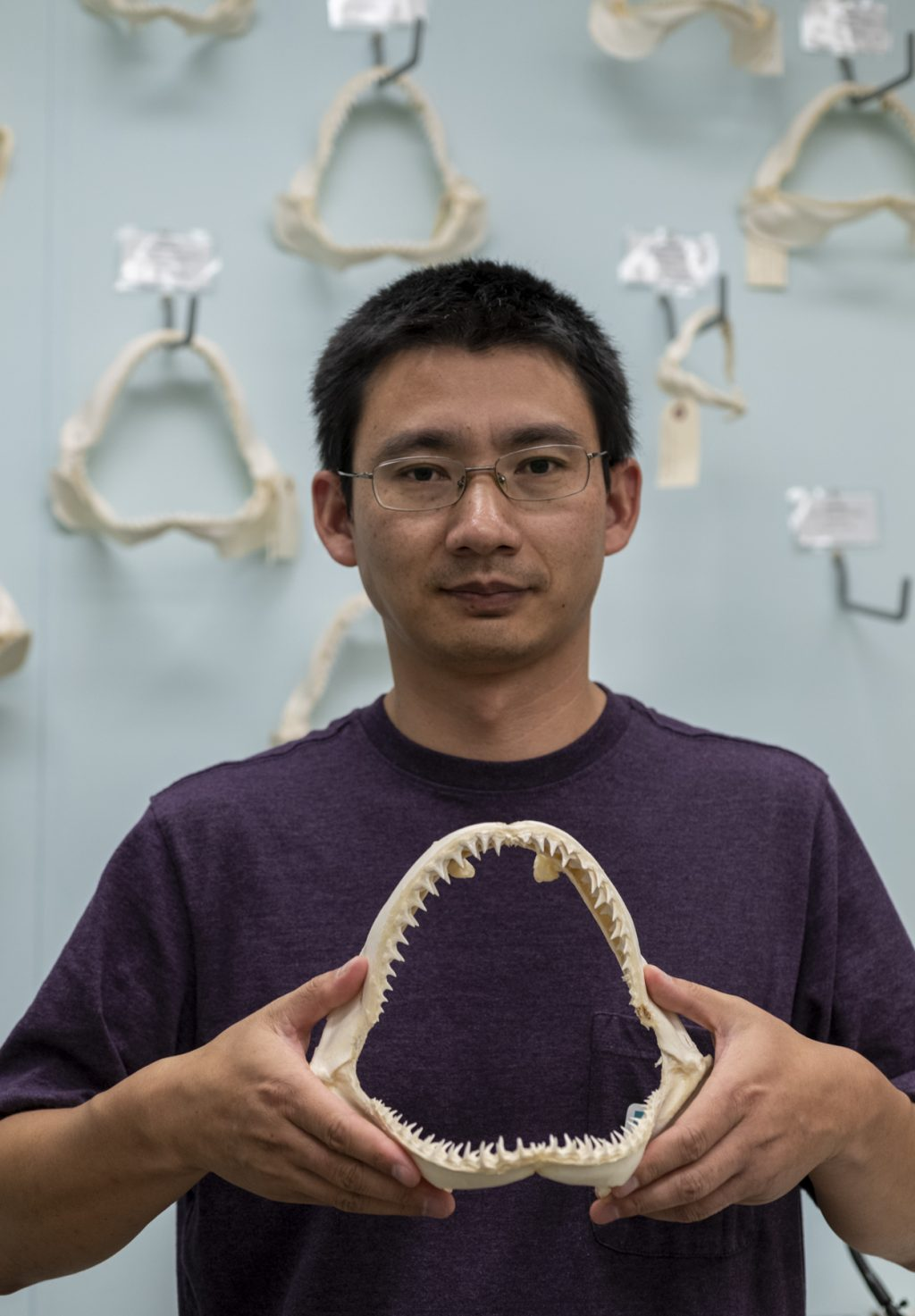 man in purple shirt holding shark jaws