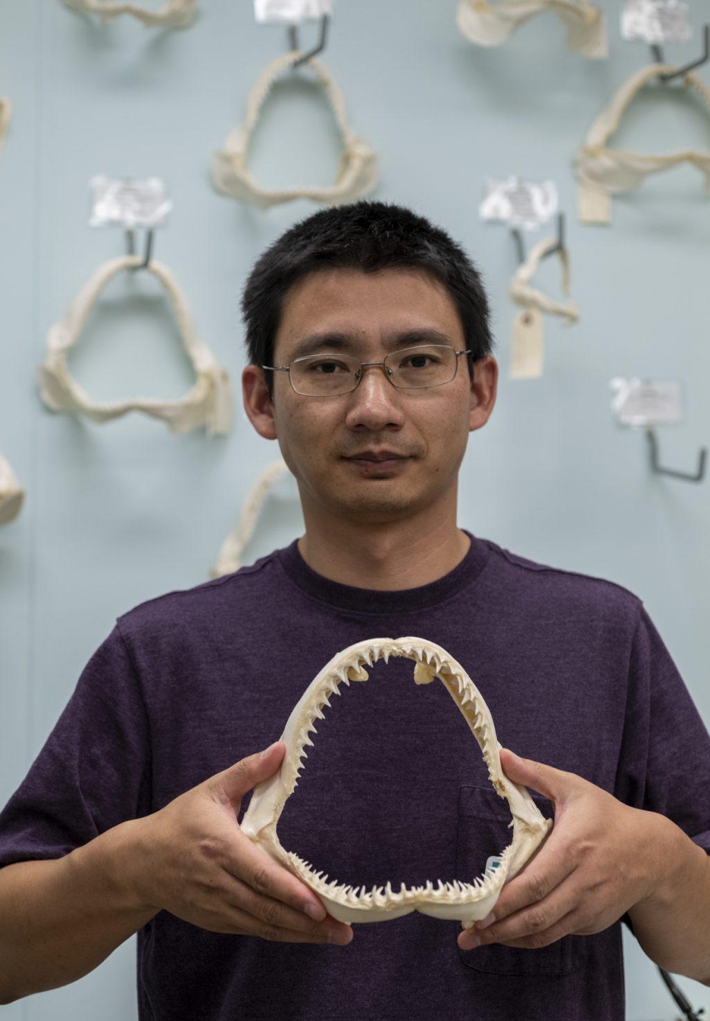 man in purple shirt holding shark jaws