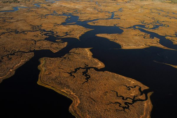 aerial image of marshy land and water