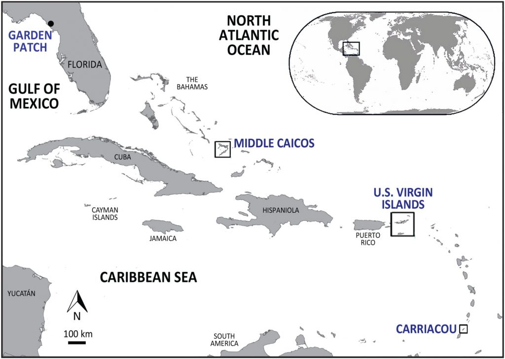 map showing location of dig sites in Florida and Caribbean