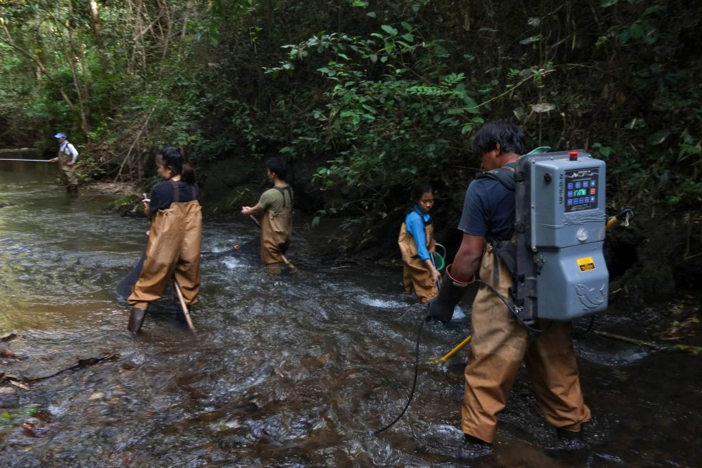 scientists wading in river