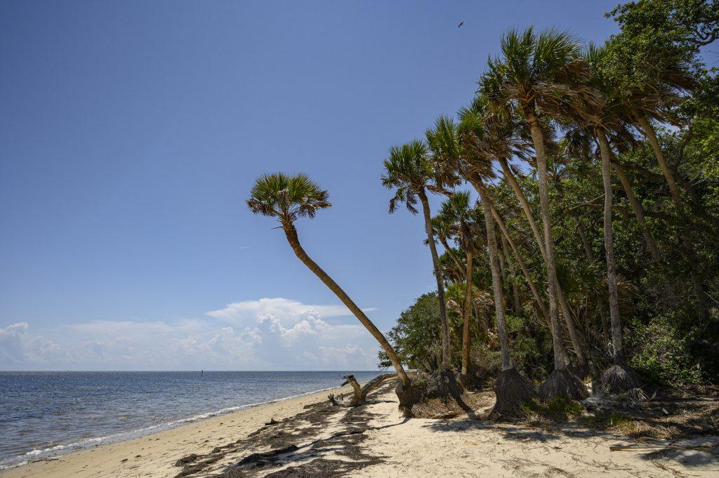 Seahorse Key beach