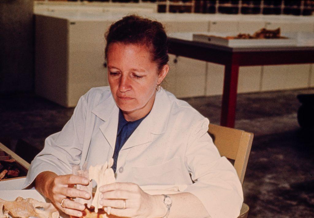 Liz Wing studies animal remains