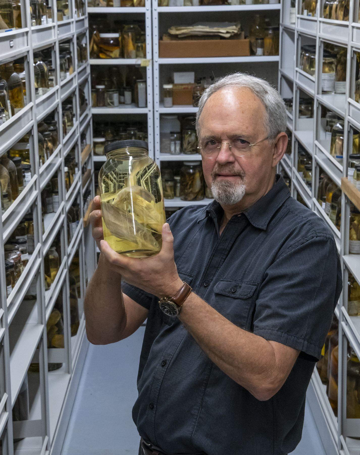 Scientist holding a fish specimen