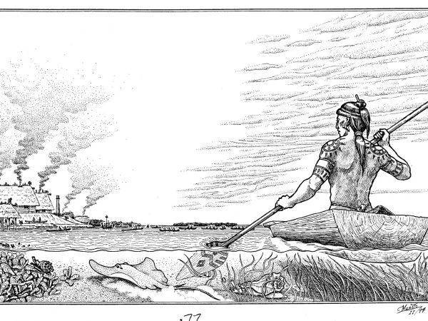 illustration of Calusa in a canoe