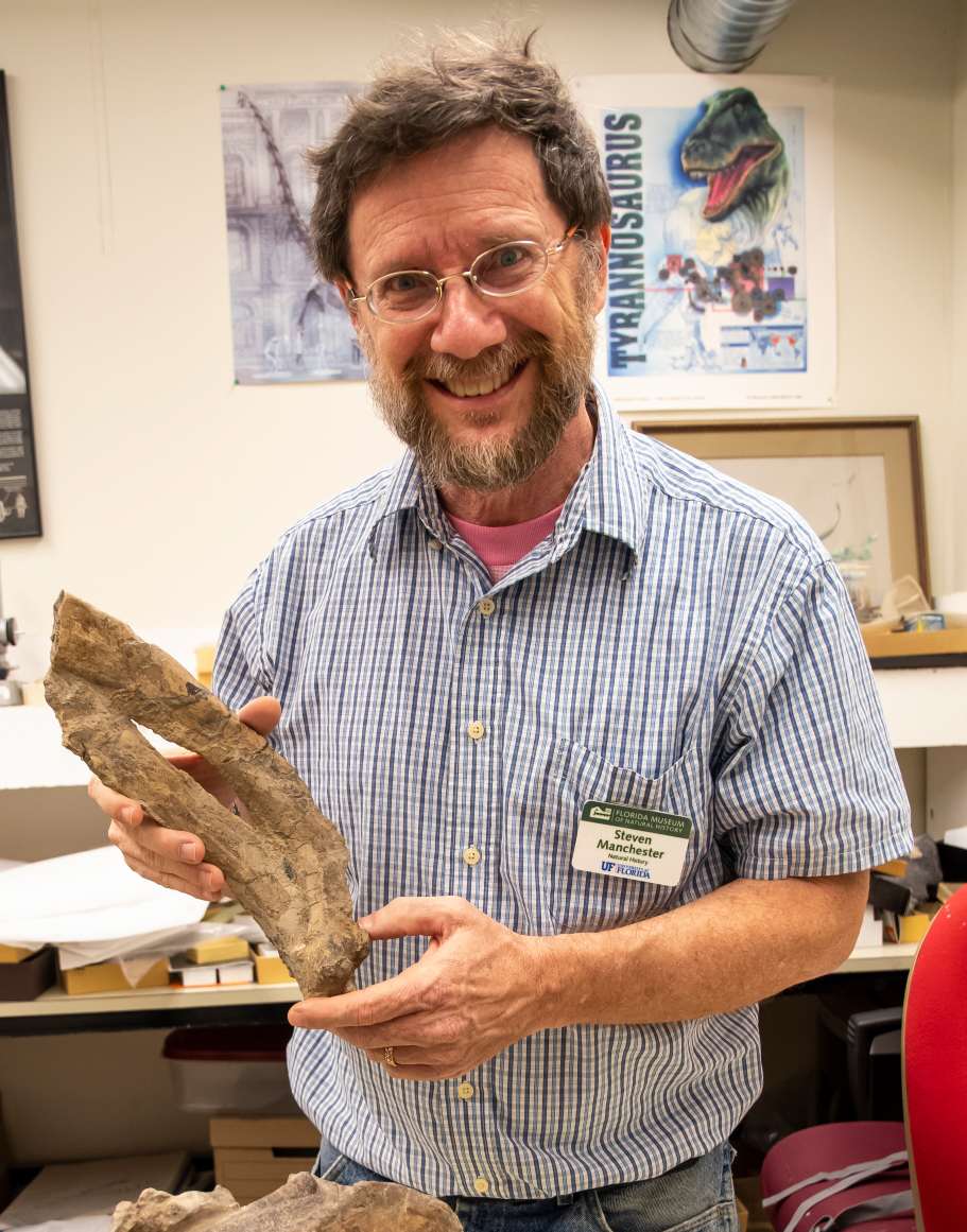 Steve Manchester with sea cow fossil