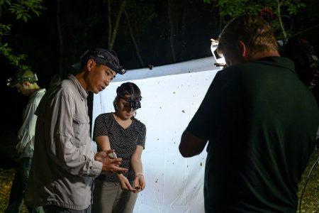 Akito Kawahara discussing moth with cameraman