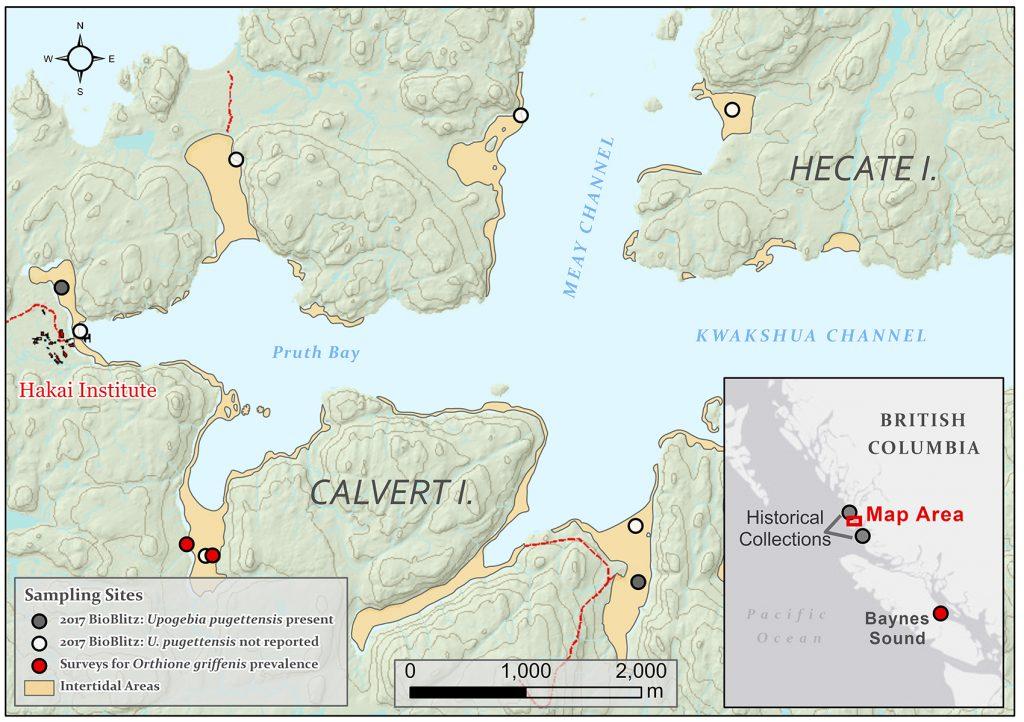 map of Calvert Island