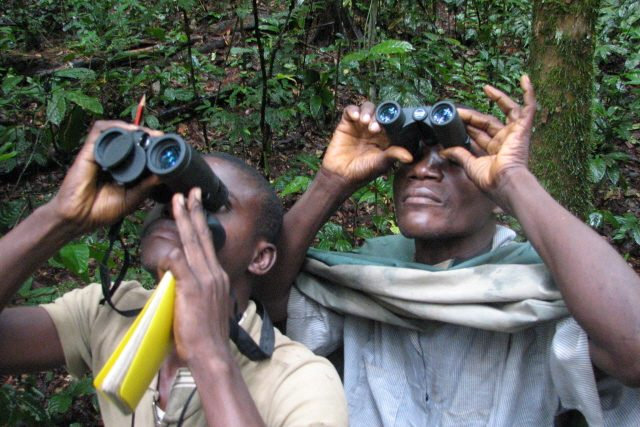 Scientists looking through binoculars