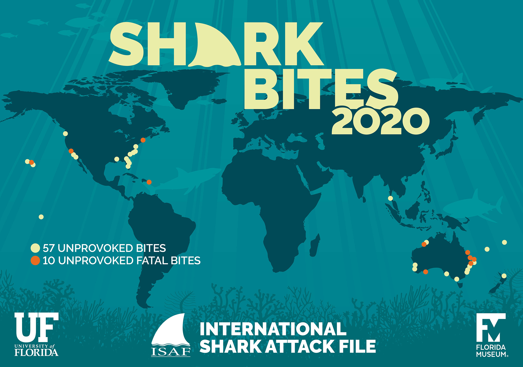 shark bites map