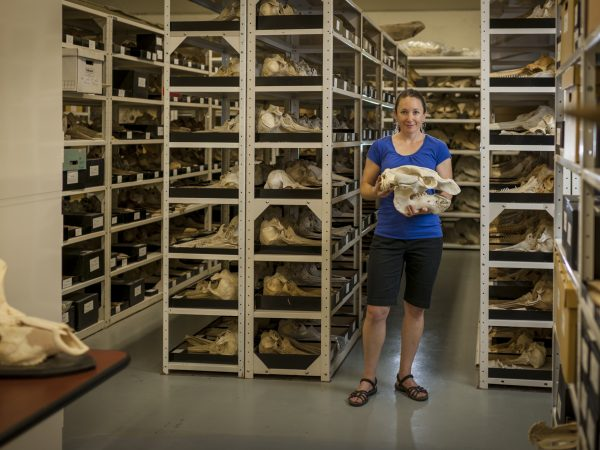 Verity Mathis in mammal collection