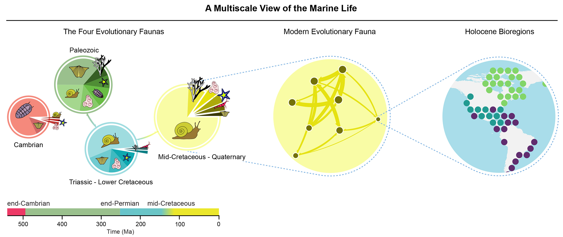 figure showing history of ocean life