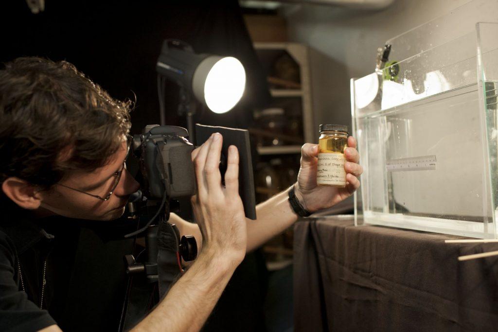 scientist photographs fish specimen