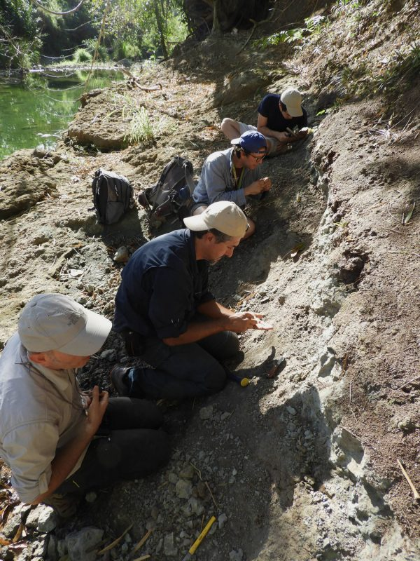 paleontologists excavating fossils