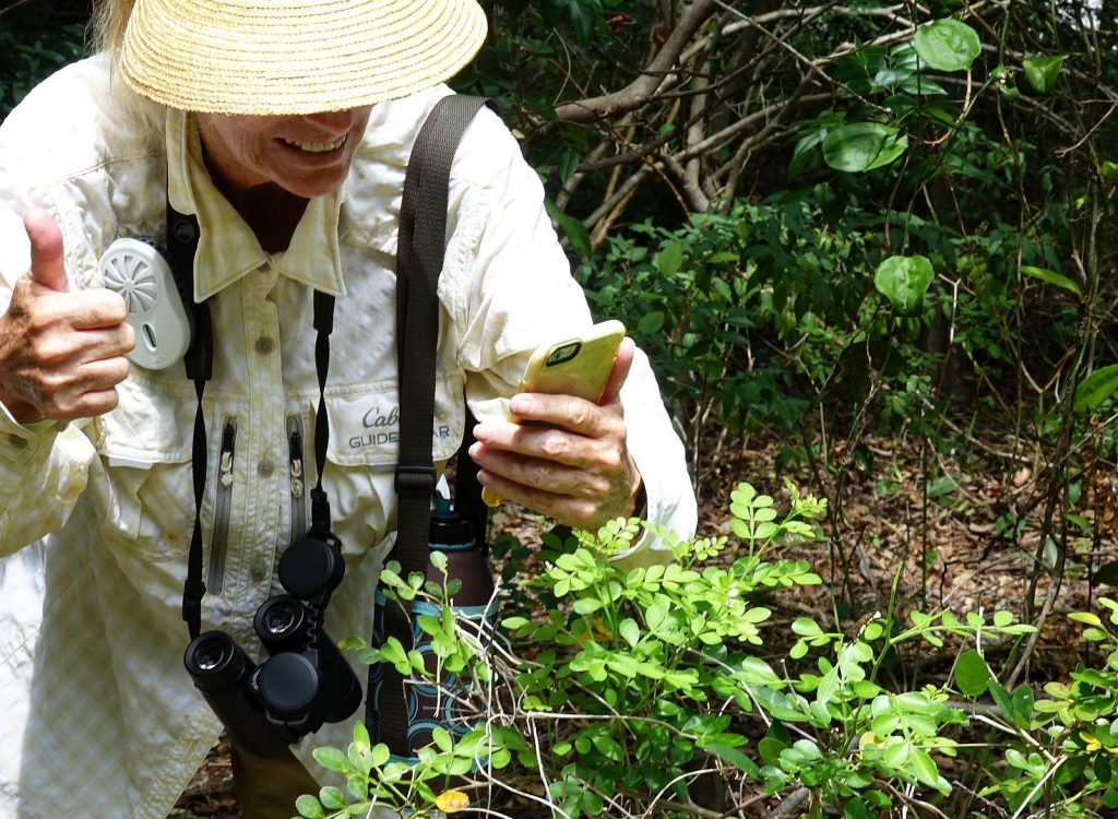 Linda Evans photographing a wild lime on Key Largo