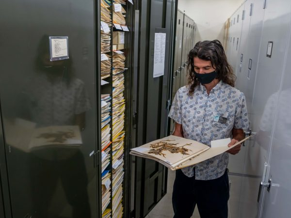 Alan Franck with herbarium specimen