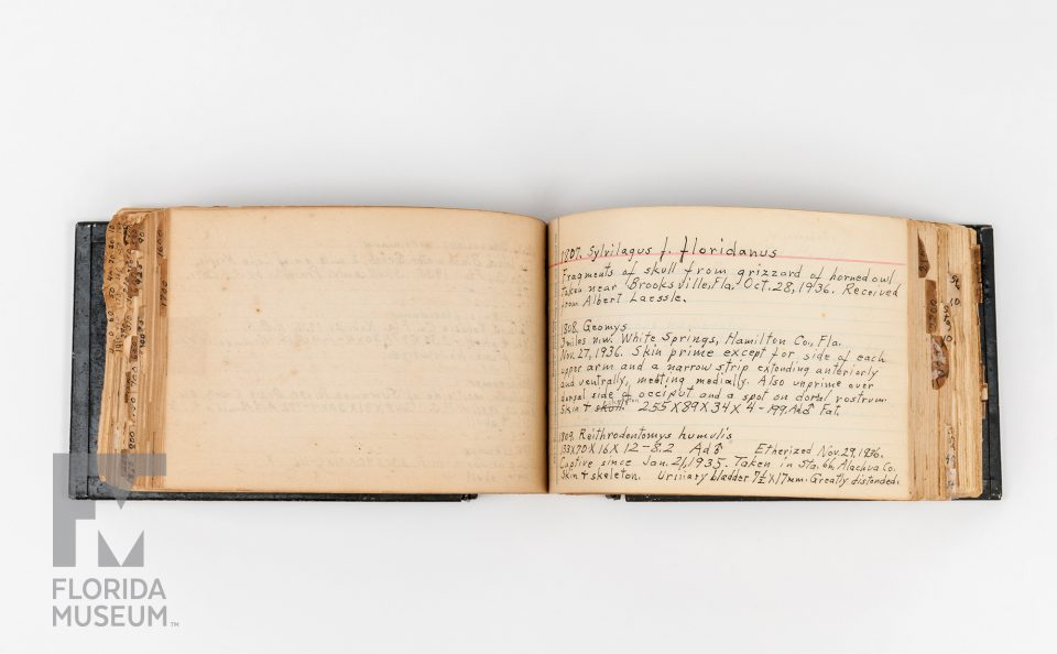 Harley B. Sherman's collection journal