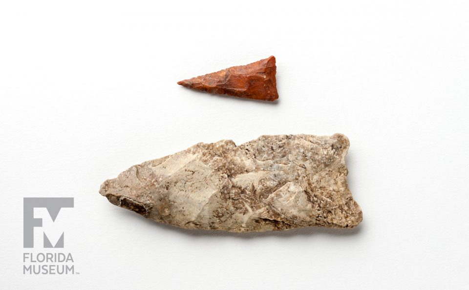 Florida Projectile Points