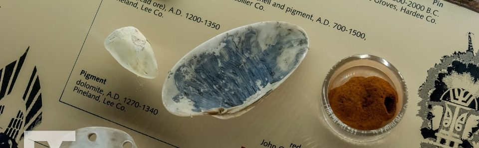 Shell with Pigment