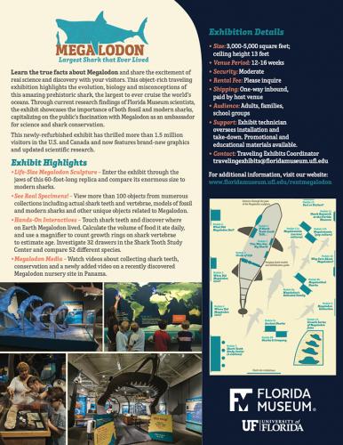 Megalodon brochure