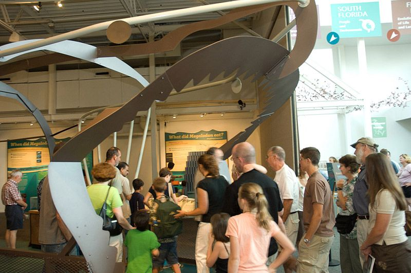 Metal sculpture of megalodon