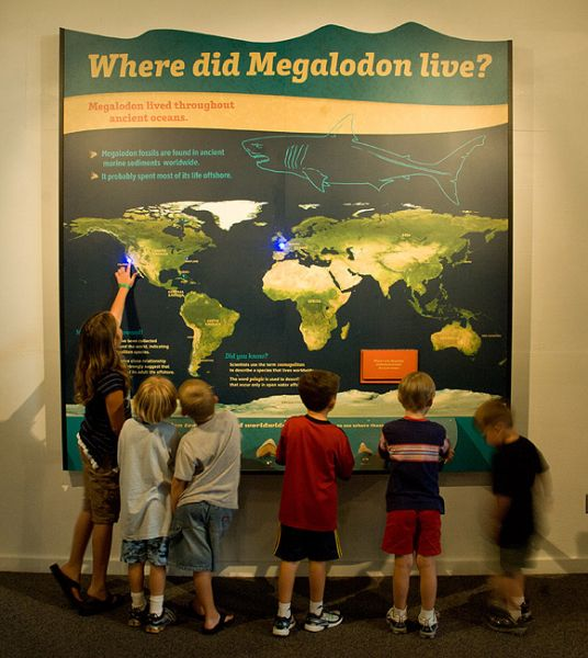 World map with locations of megalodon
