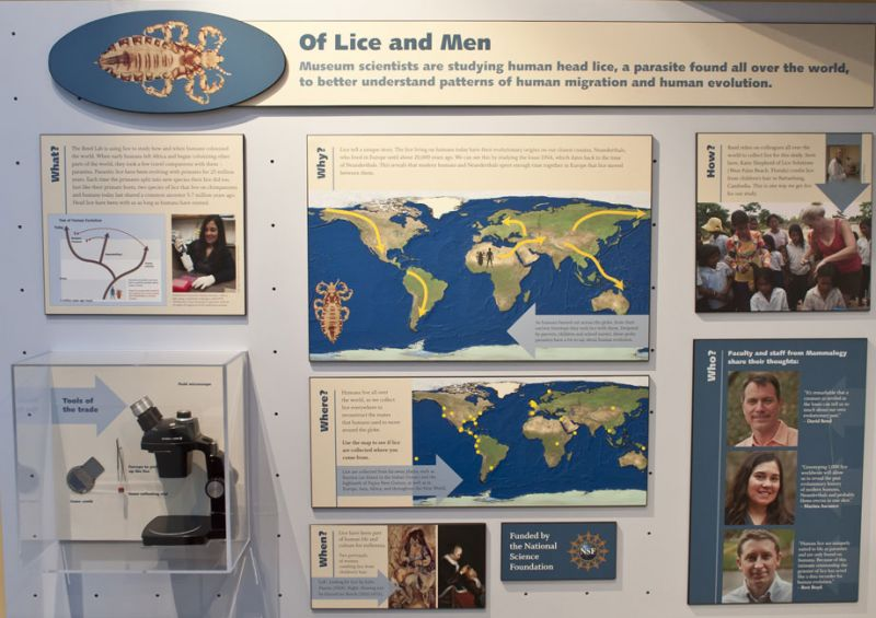 exhibit display panel