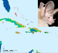 Caribbean modeling map
