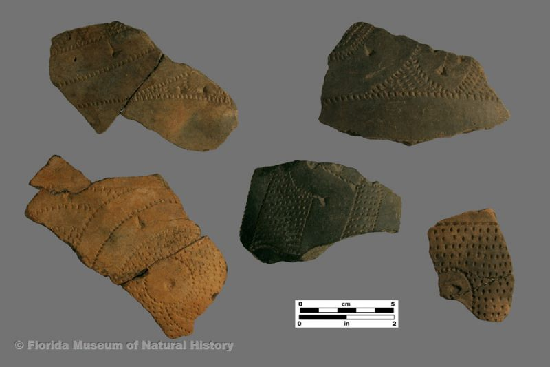 Weeden Island Punctated body sherds
