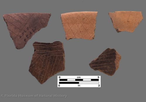 5 sherds with very fine interior engraving