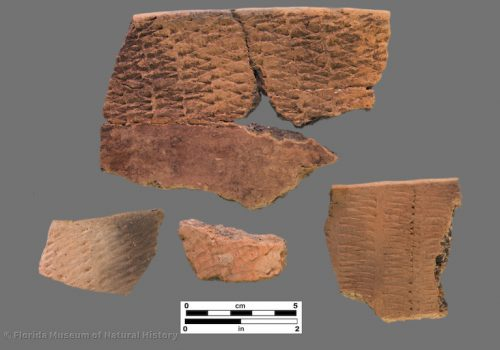 4 sherds with rocker stamping