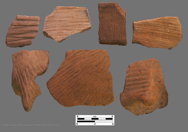7 sherds with linear stamping