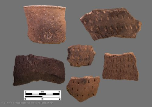 6 sherds with fingernail and similar impressions