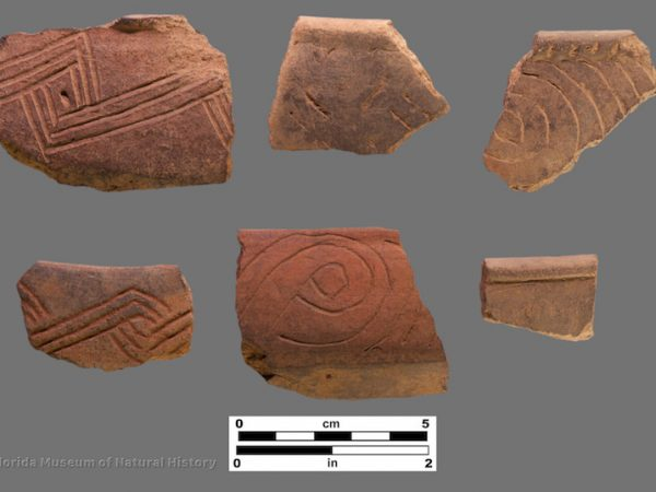 6 sherds with incised decoration