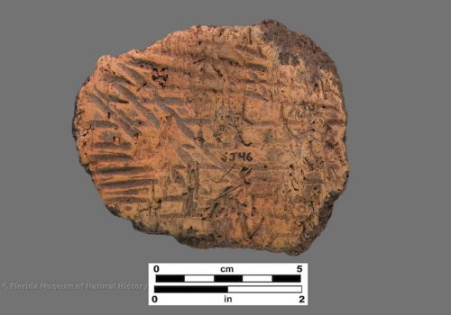 1 sherd with simple stamping over paste with visible linear voids