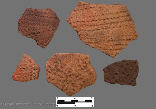 5 sherds with linear stamped bands