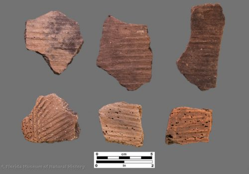 6 sherds with linear stamping