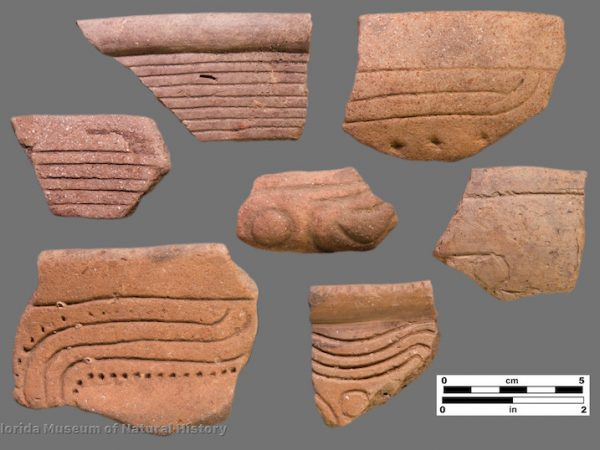 7 sherds with straight and curvilinear incisions