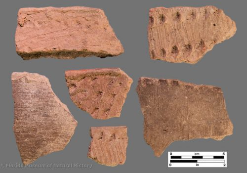 6 sherds with fine brushing and fingernail impressions