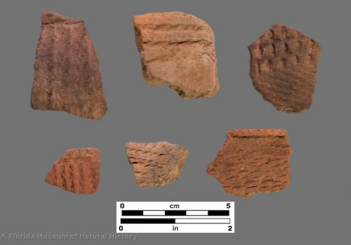 6 sherds of pottery with linear bands of punctation like cord-marking