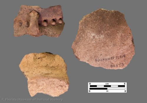 3 sherds of pottery with shell tempering and appliques
