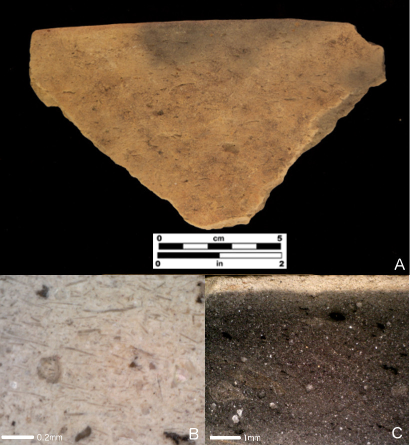 Florida spiculate pottery; a) St. Johns Plain sherd; b) sherd surface at 200× magnification, showing spicules in dominant parallel orientation; c) cross-section at 50× magnification showing dark firing core and fine-grained texture.