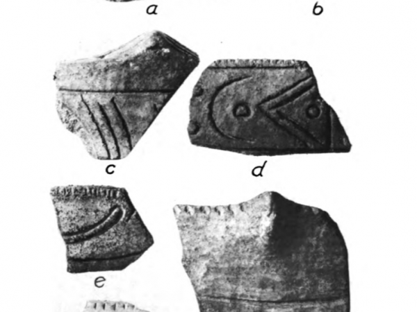 Page of sherds from Willey 1949