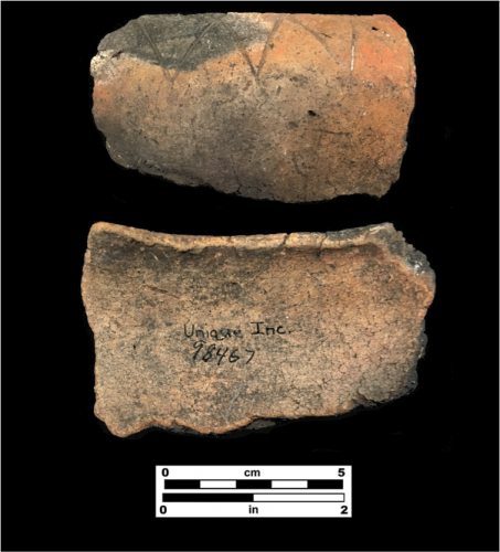 Rim sherd with triangular incisions