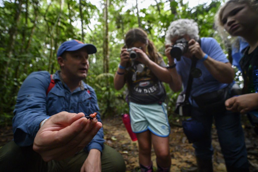 People photograph a dart frog being held by herpetologist David Blackburn in a rainforest in Costa Rica.